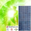 100% TUV standard flash test poly solar panel with best price