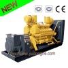 2011 HOT biogas generator dynamo series (3kw~3500kw)