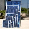 40W poly-crystalline silicon solar modules