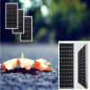 65W mono solar panels for GARDEN LIGHT