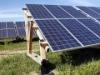 Alex 260W Mono Solar Panel