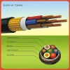 Armoured Screen Control Cable 0.6/kv by BS 6346