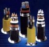 Best Selling Control Cable With Copper Conductor