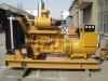 Biogas generator(10KW-1000KW)