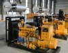 CE approved factory price natural gas generator 5kw