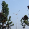 China Hummer 20000W Home Wind Turbine Hot selling