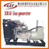 Coal gas generator set, (20kw, watercooled, brushless DC alternator, with ATS, AMF)
