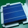 Hottest sale High Efficiency A grade 156mm poly solar cell, 2/3BB ,6inch high power