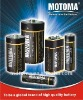 LR03/Size AAA Super Alkaline battery, blister-card package