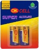 LR20 Alkaline Battery (Size D, AM1)