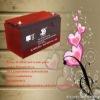 Maintenance free storage battery 12v100ah