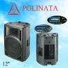 PRO audio PA speaker