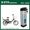 PROMOTION! 36v 10ah rechargeable electric bicycle li polymer battery pack with BMS and charger