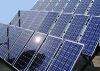 Poly Solar Panel 3W-280W (IEC, TUV)