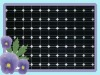 Popular 160W mono solar panel with TUV,UL,MCS