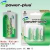 R20/UM-1 Carbon Zinc Batteries