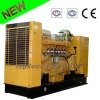 Reliable Power Plant! Natural Gas Generator