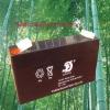 Sealed lead acid maintenance free storage battery