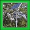 Solar Street Light of Low Cost Running