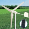 WT1000 Wind turbine for home