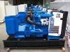 Well-knowen Diesel Generator Set