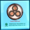 XLPE armoured electric cable, XLPE electrical cable,power cable,YJV22 8.7/15kv 3x150