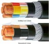 Xlpe Cable / High Voltage Cable / Power Cable / Armoured Cable (**L)