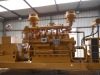 biomass generator set