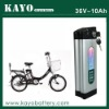 ebike lithium battery packs 36V/10Ah