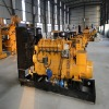 natural gas generator 20-500kw